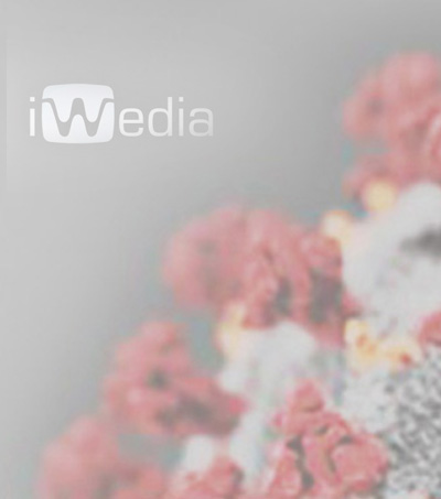 iwedia covid 19 news